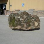 Large Moss Rock